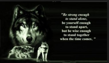 Entrepreneurs Cant be Lone Wolves and be Successful